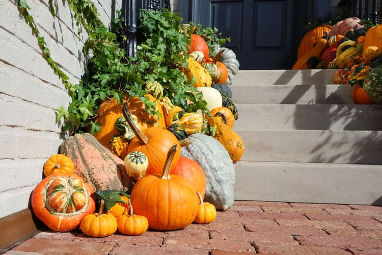 20 Fantastic Fall Decorating Ideas 7