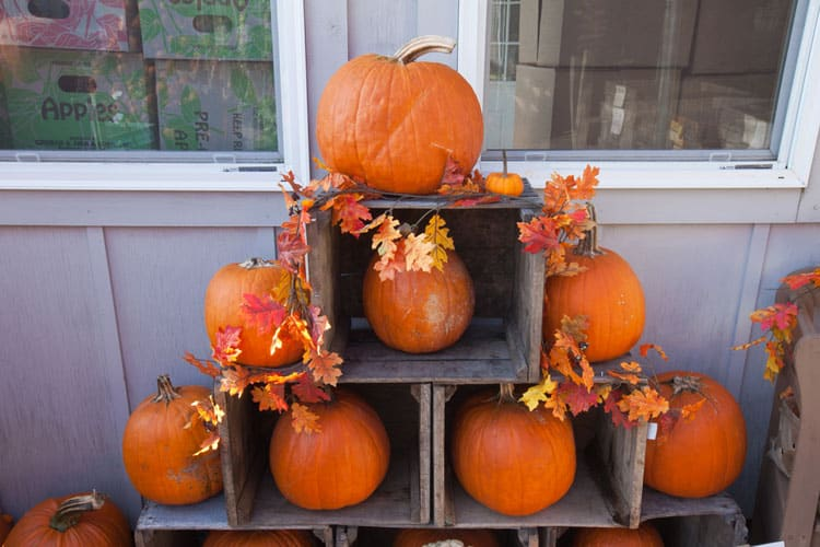 20 Fantastic Fall Decorating Ideas 13