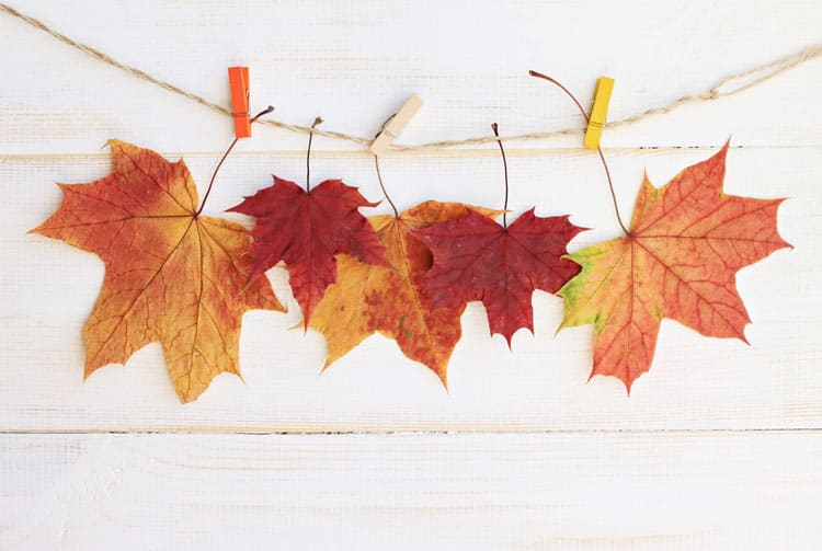20 Fantastic Fall Decorating Ideas 2