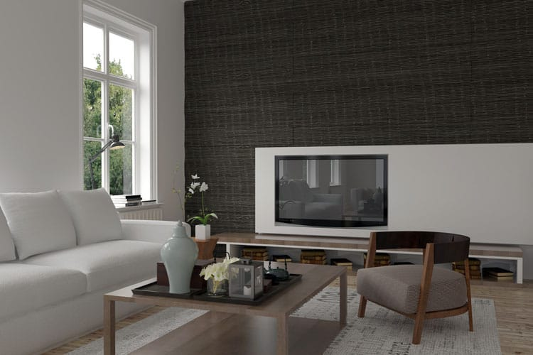 Accent Wall Living Room - 11 best Samples 1