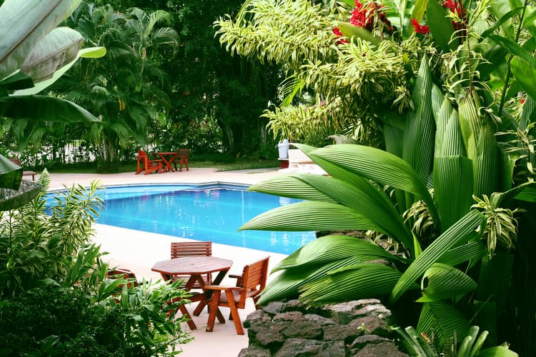 Simple and Small backyard pool ideas 3